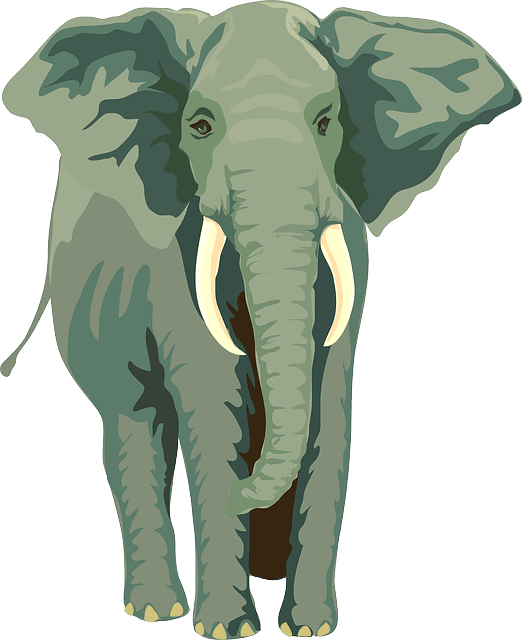 Goal setting: what does it have to do with elephants?